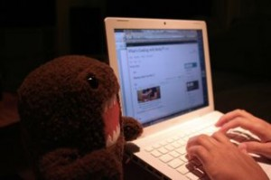 What better way to end this fabulous day then blogging it with my buddy Domo!