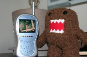 Domo watching Noby sleep on the monitor, LAST week!