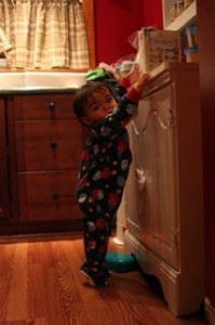 We took the camera out to show off Nobys new PJ.  The 18 months are not as big as we thought.  I love it when he stands on his tippy toes!!